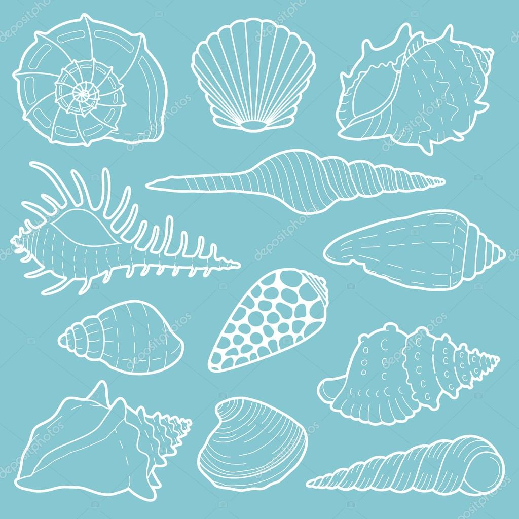 White sea shells vector icon set