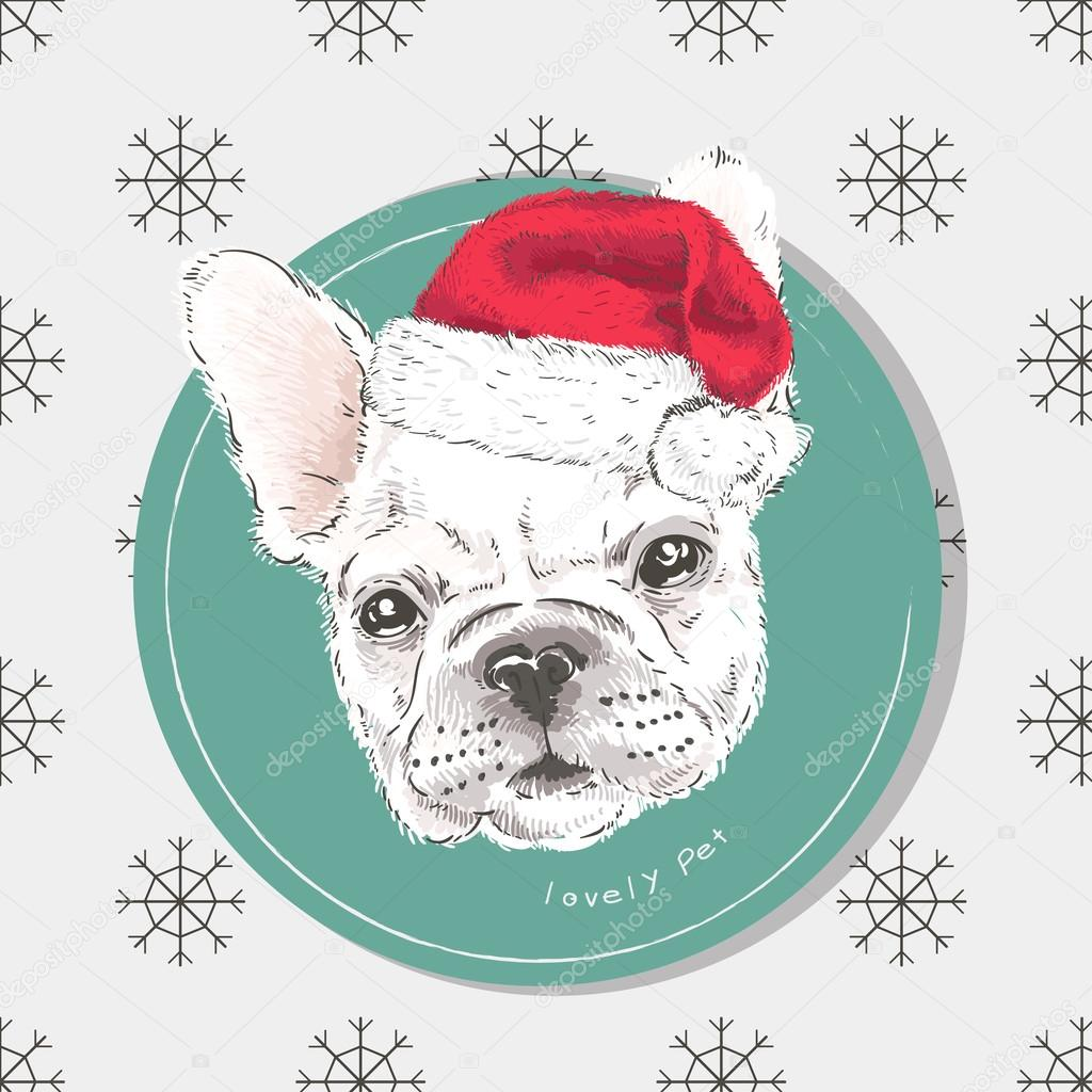 Dog painted by hand. Collection of purebred dogs. Pug vector. Pug in Christmas hat. Holiday card. New Year.