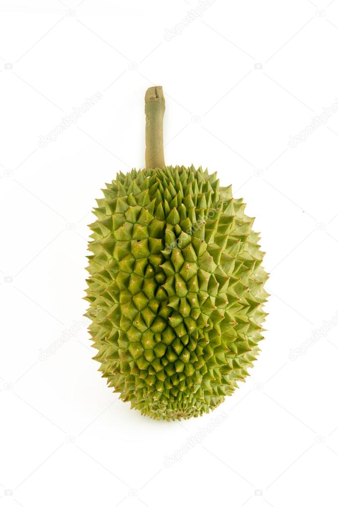 Durian The king of fruit on white background