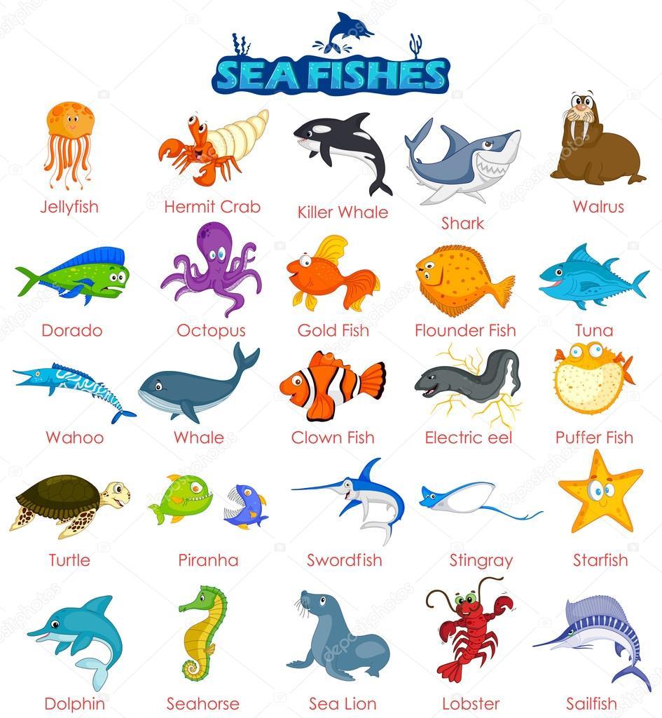 Peces de mar cheap siluetas de peces de mar peces en el for Variedad de peces