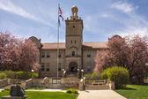 Fotografia Colorado School of Mines Hall in fioritura primaverile