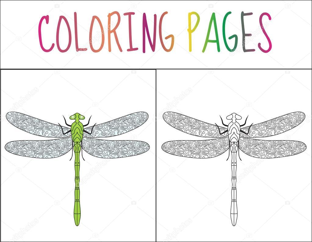 Página de libro para colorear. Libélula. Versión boceto y color ...