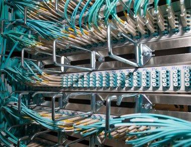Cloud shared optical fiber patch panel in a data center
