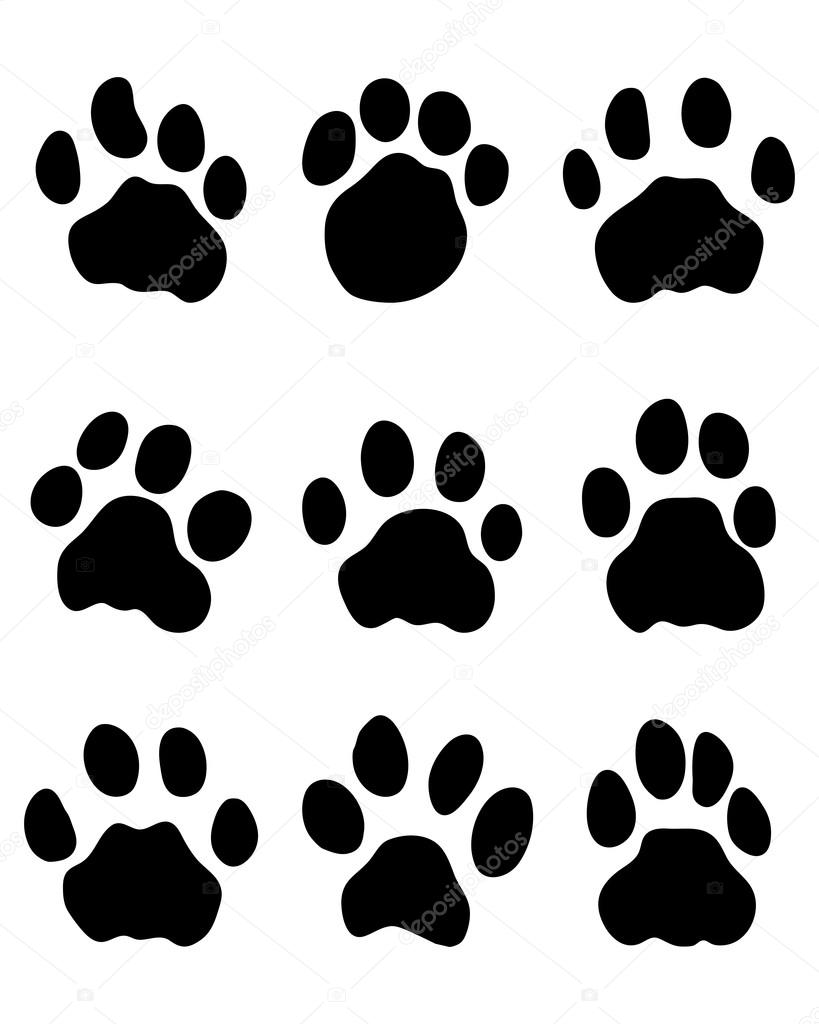 video jaguar paw download with Stock Illustration Jaguars Paw on Clipart Wildcat Paw Golden 1 likewise Royalty Free Stock Images Collection Black Silhouette Bear Heraldry Image30163749 further Stock Photo Jaguar Head Image26562450 besides Panther Paws besides Dog Paw Outline.