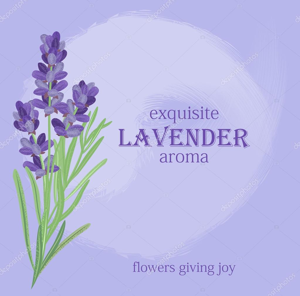 Branch of flowers of lavender.