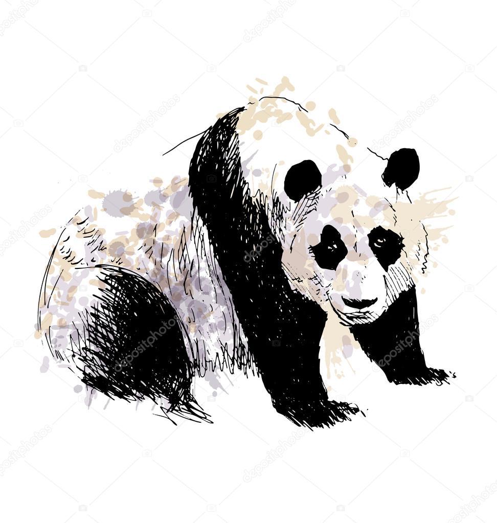 Couleur panda dessin main image vectorielle onot - Dessins de panda ...