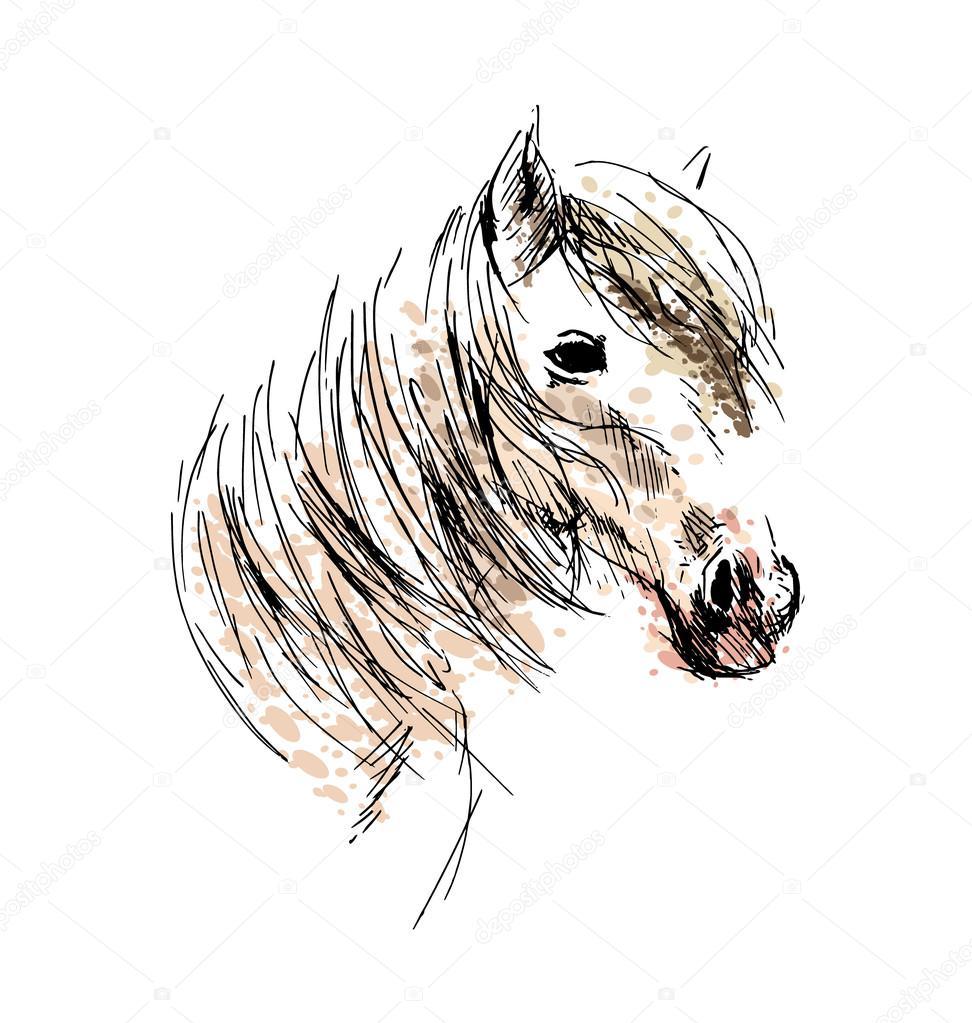 T te de cheval dessin couleur main image vectorielle onot 117756454 - Tete de cheval dessin ...