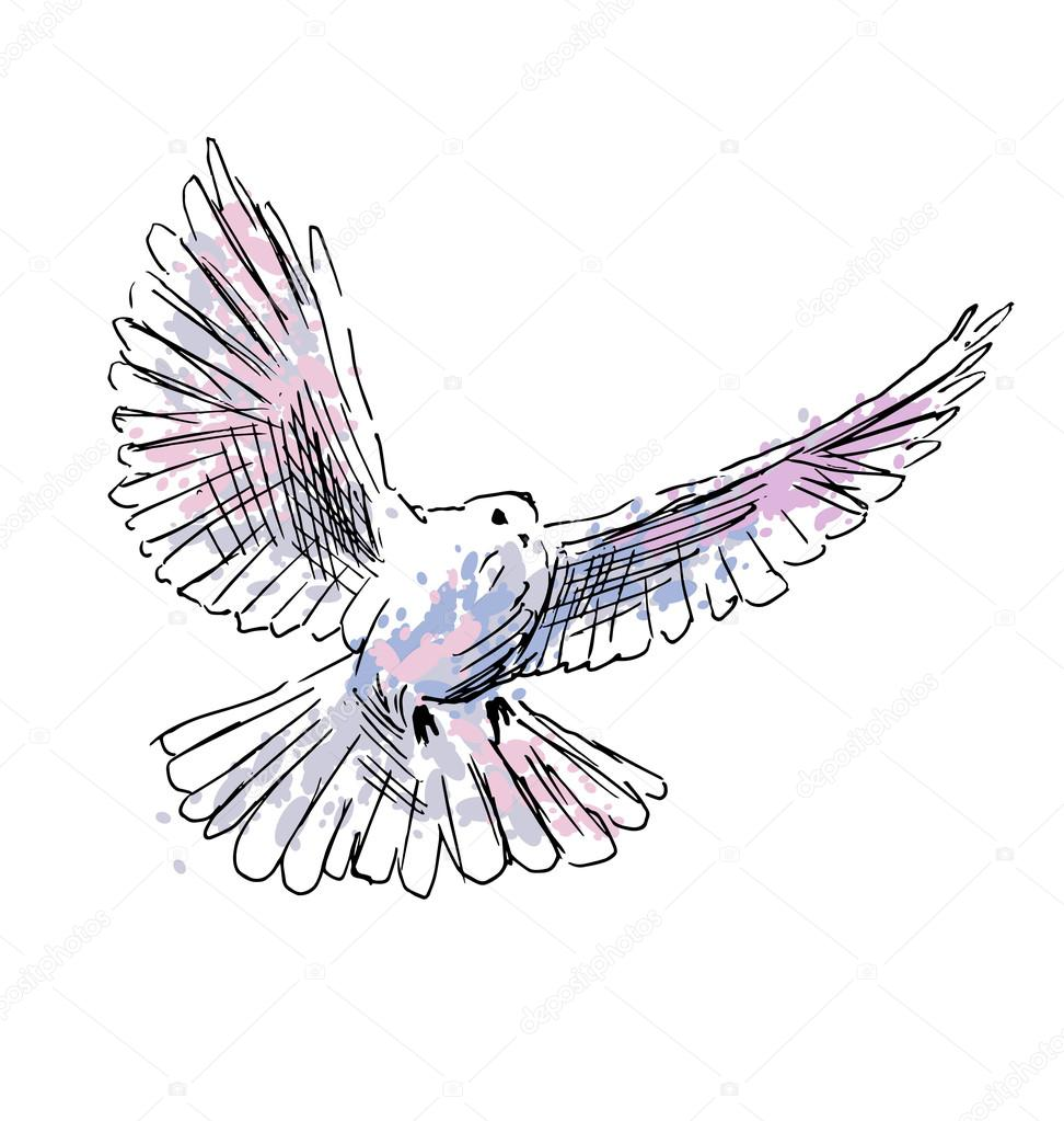 Colored hand drawing dove — Stock Vector © onot #117756466