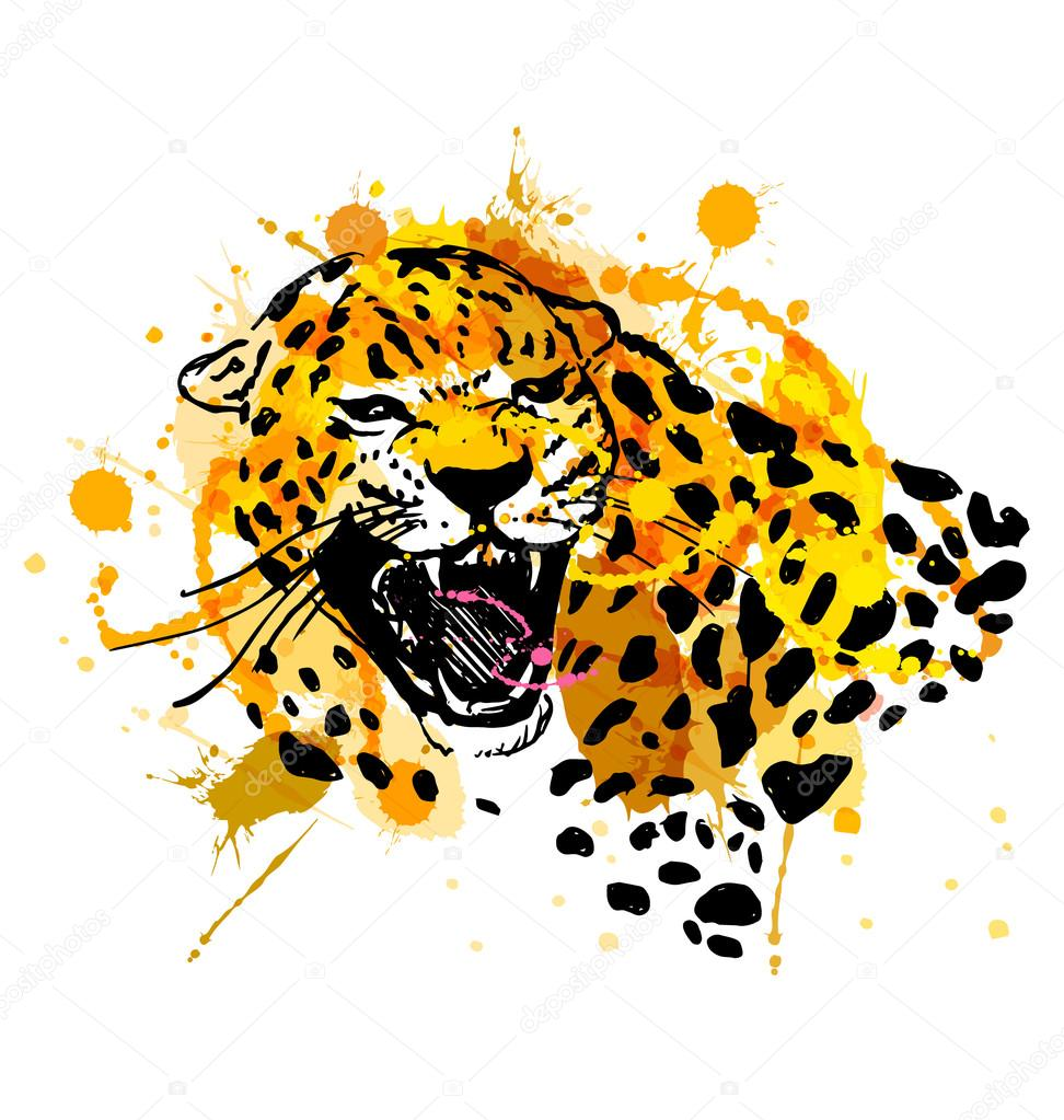 Colored Hand Sketch Head Roaring Jaguar Stock Vector C Onot