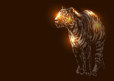 Tiger on a dark background