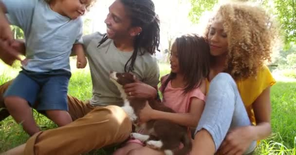 Afričan-americká rodina relaxační pod strom v parku