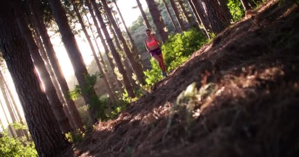 runner on nature trail through trees on mountain