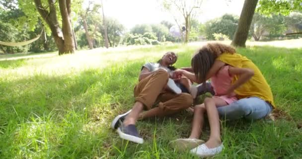 african-american family relaxing under a tree in park