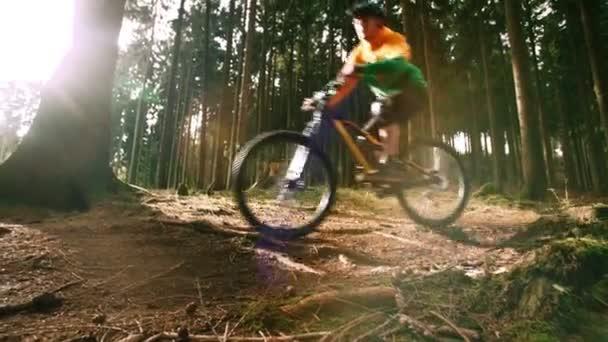 sjezdové motorkář v lese