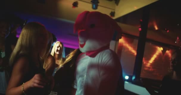 Guy as bunny at party club next young woman dancing
