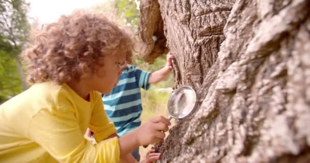 Boys exploring nature with magnifying glass