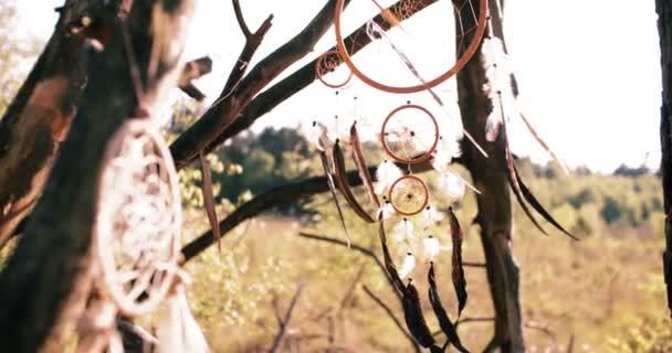 dream catcher in the wilderness in autumn