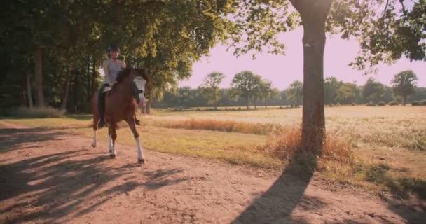 Girl riding a beautiful horse