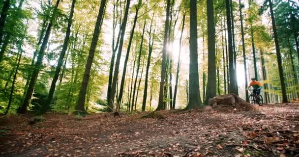 Uomo sulla bici di montagna salta nei boschi