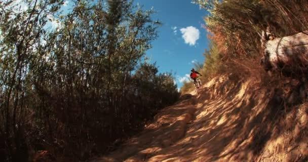 mountain biker riding down a dirt track
