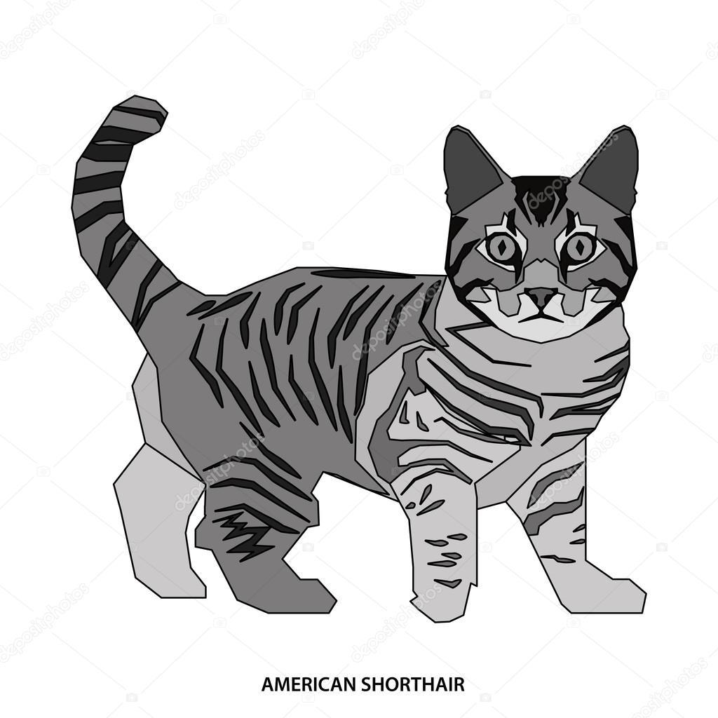 猫の品種ベクトル イラスト ストックベクター Illustratiostock