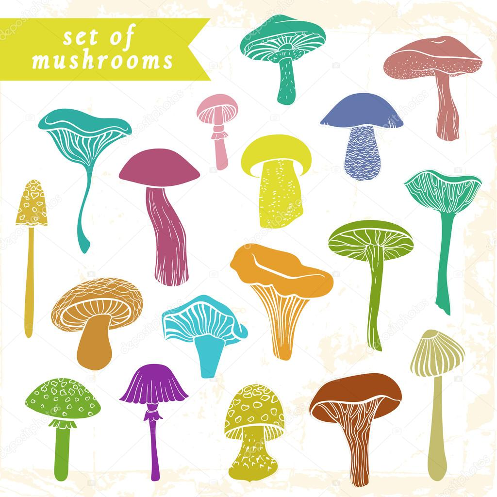 Set of different hand drawn varicolored mushrooms in bright tones.