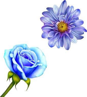 Mona Lisa flower and Blue Rose