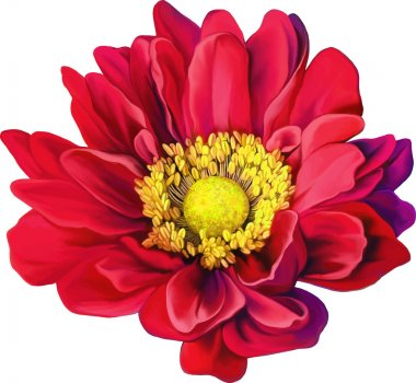 Red Mona Lisa flower