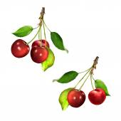 Piros cseresznye, levelekkel