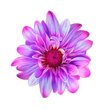 Bright Mona Lisa flower