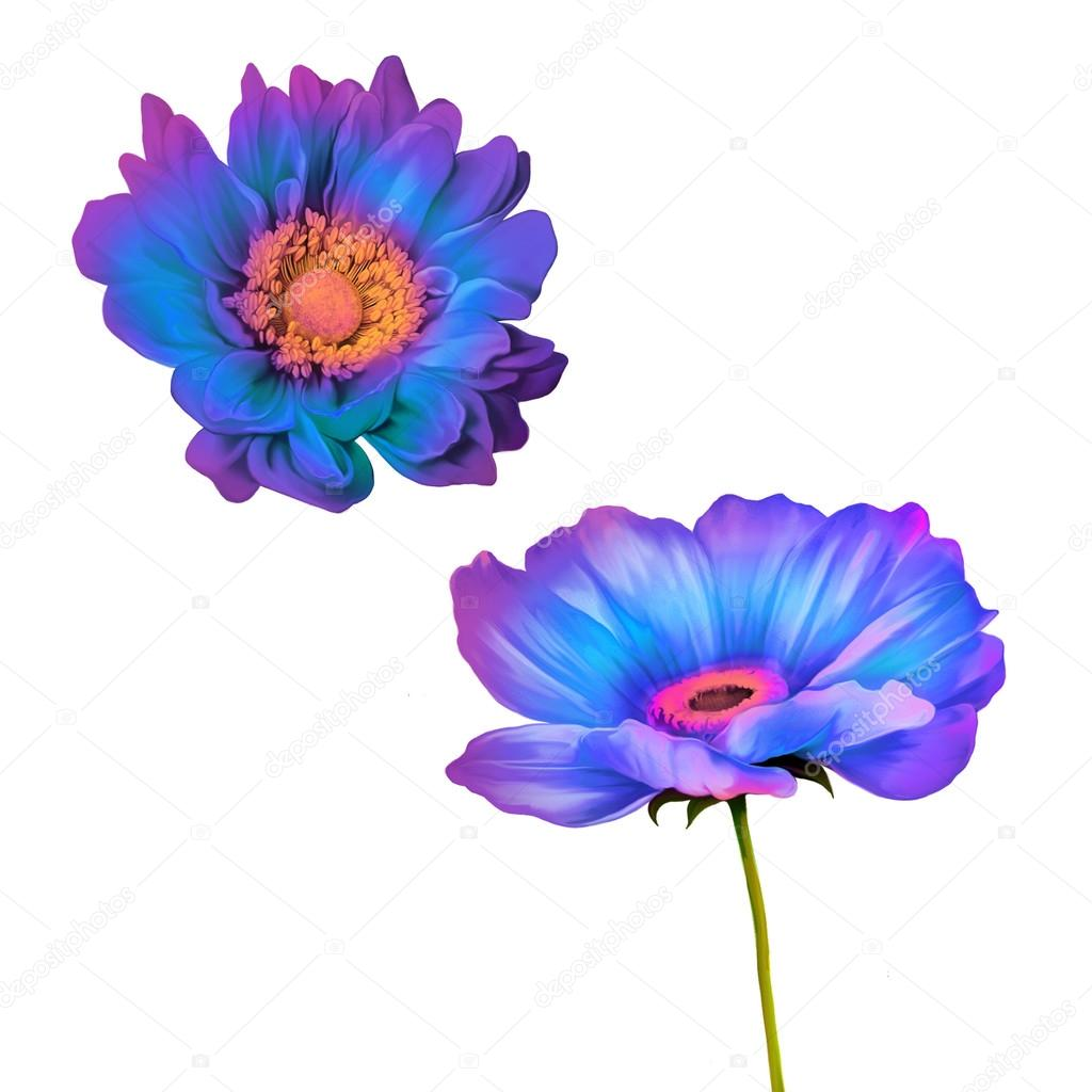 Tender blue and purple poppy flowers stock photo artnature 91751130 tender blue and purple poppy flowers stock photo izmirmasajfo