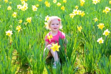 Little girl in field of daffodils
