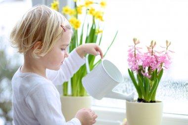Little girl watering spring flowers