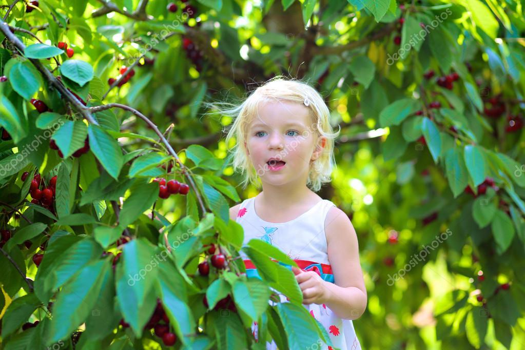 Little girl picking fruits in the garden