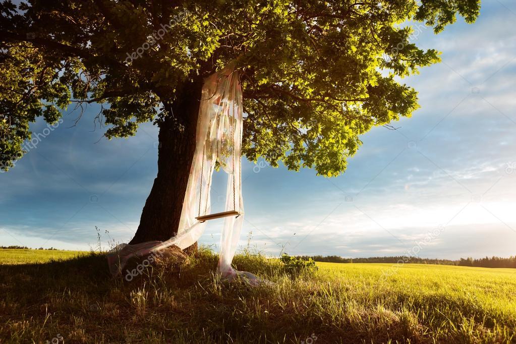 Swinging on the tree