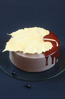 Blueberry Chocolate Mousse Cake