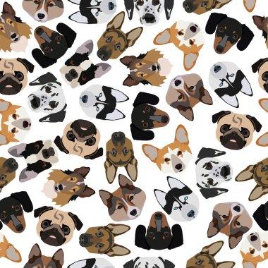flat seamless pattern pedigree dogs
