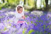 Fotografie Little girl playing in bluebell flowers field