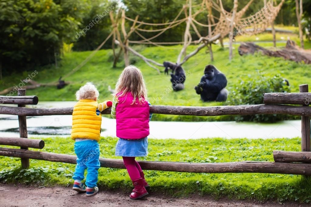 kids watching animals at the zoo ストック写真 famveldman 118021076