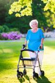 Photo Senior lady with a walking aid in the park