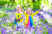 Fotografie Kids in a garden with bluebell flowers