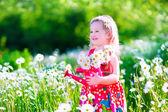 Fotografie Kleines Mädchen in Gänseblümchen Blumenfeld
