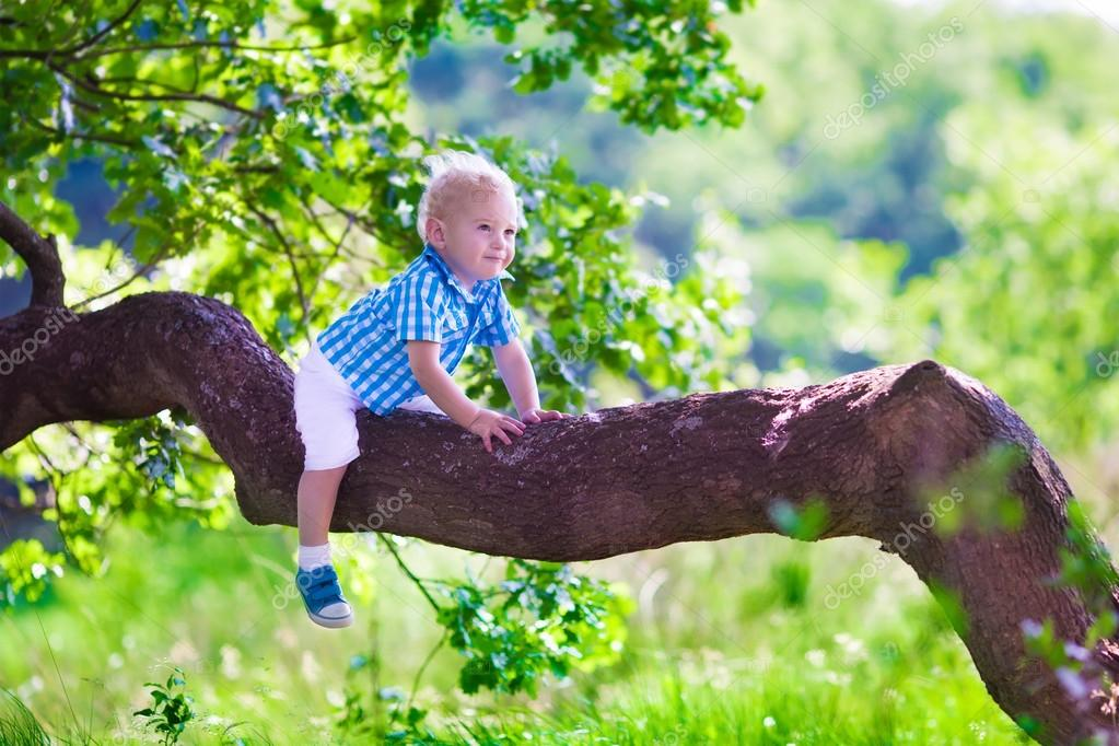 Little boy climbing a tree