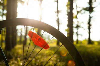 a wheel of bicycle in the evening,the sunset light.
