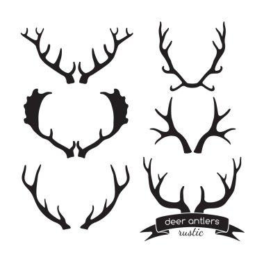 Hand drawn vintage antlers. Rustic decorative vector design elem