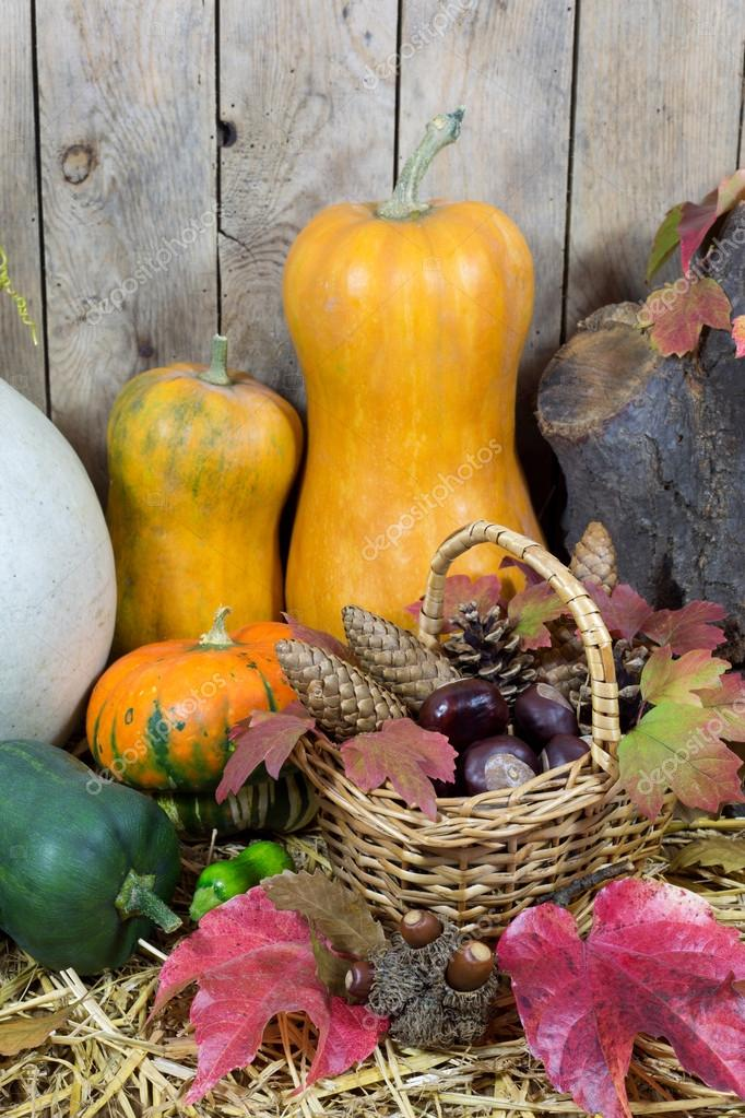 Still Life with Two Yellow Pumpkins, Wicker Basket Filled with Pine Cones, Acorns, Chestnuts and Autumn Leaves on a Hay, Wooden Planks Background