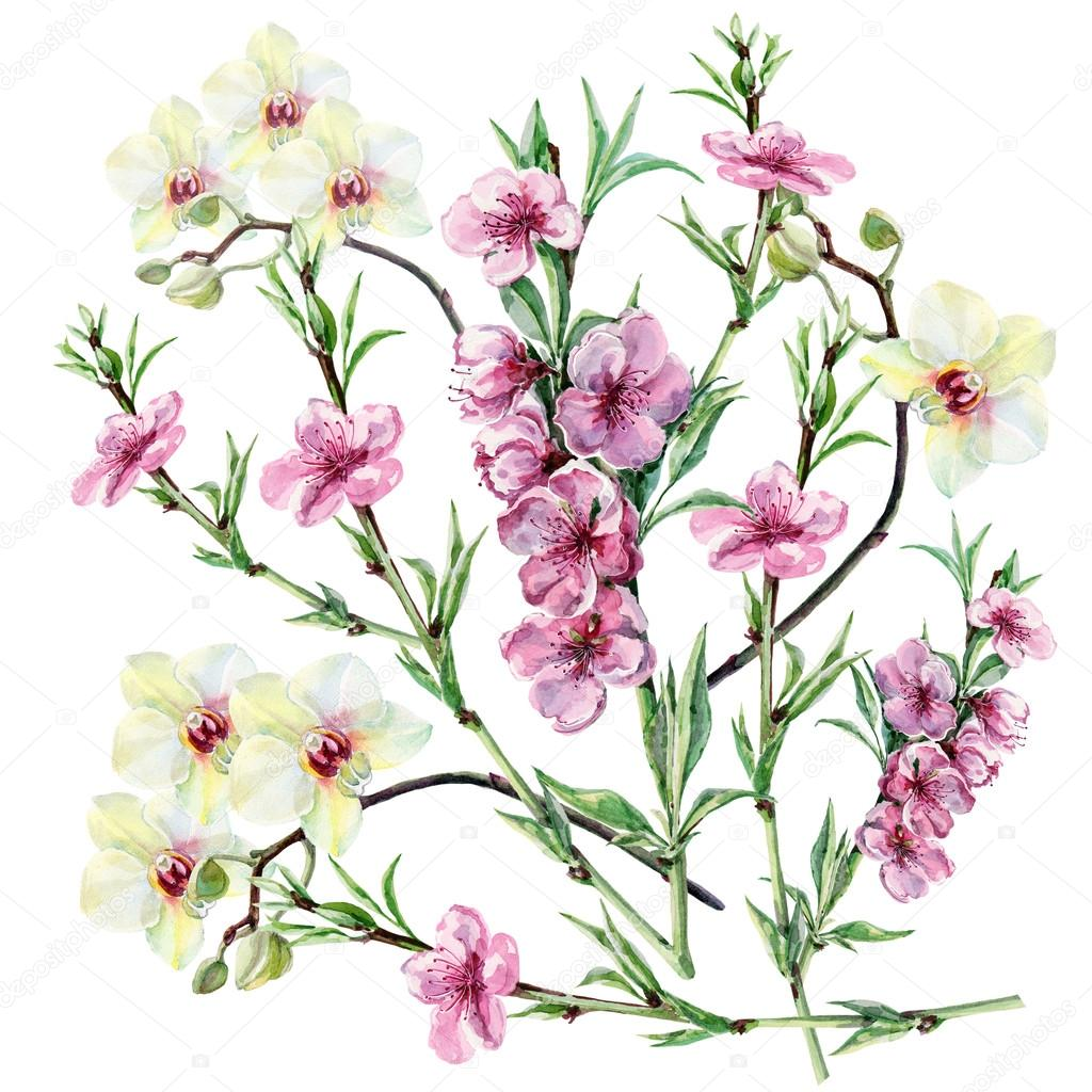 Flowers peach and orchids, watercolor, pattern