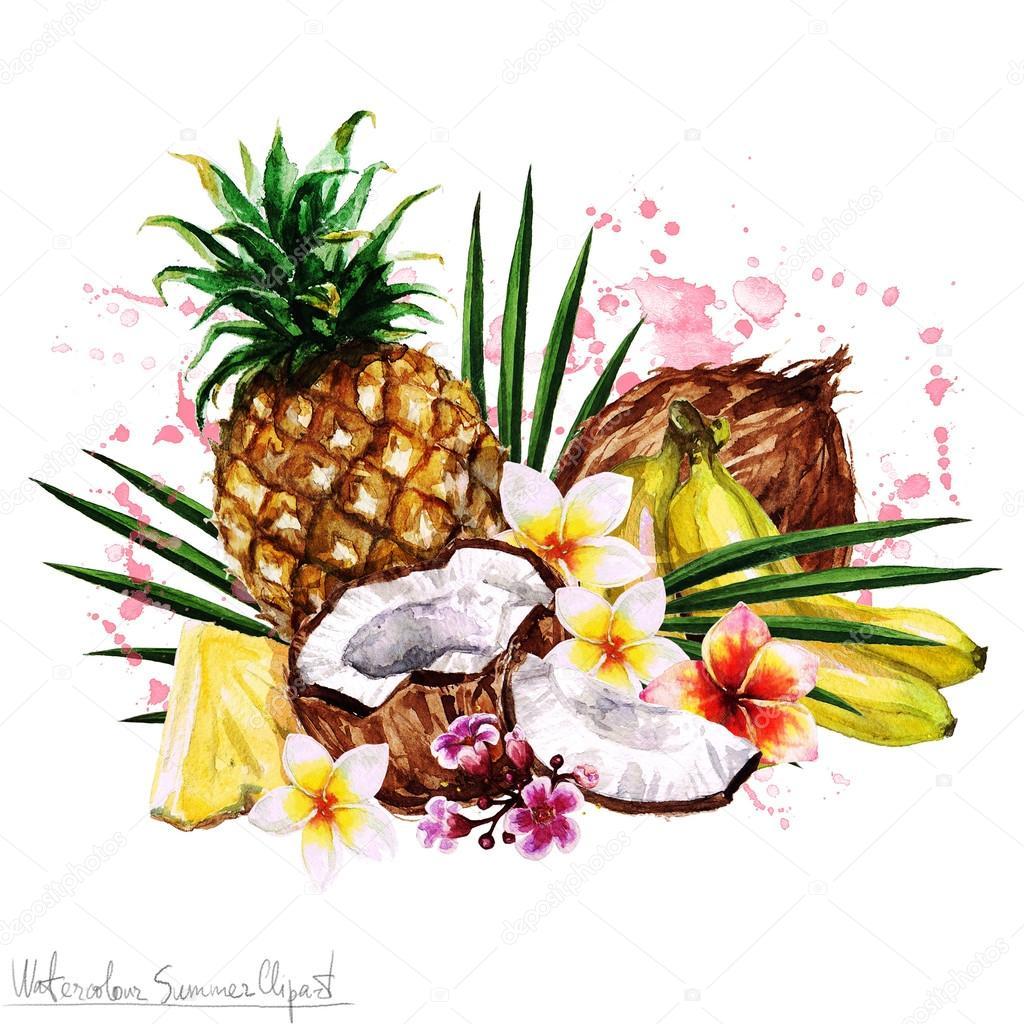 Acquerello estate clipart frutta tropicale foto stock for Clipart frutta