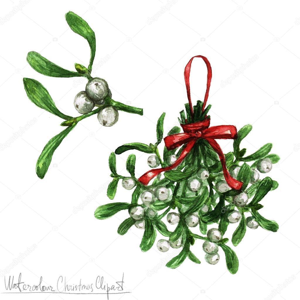 Weihnachten Clipart Bilder.Aquarell Weihnachten Clipart Mistel Stockfoto Nataliahubbert