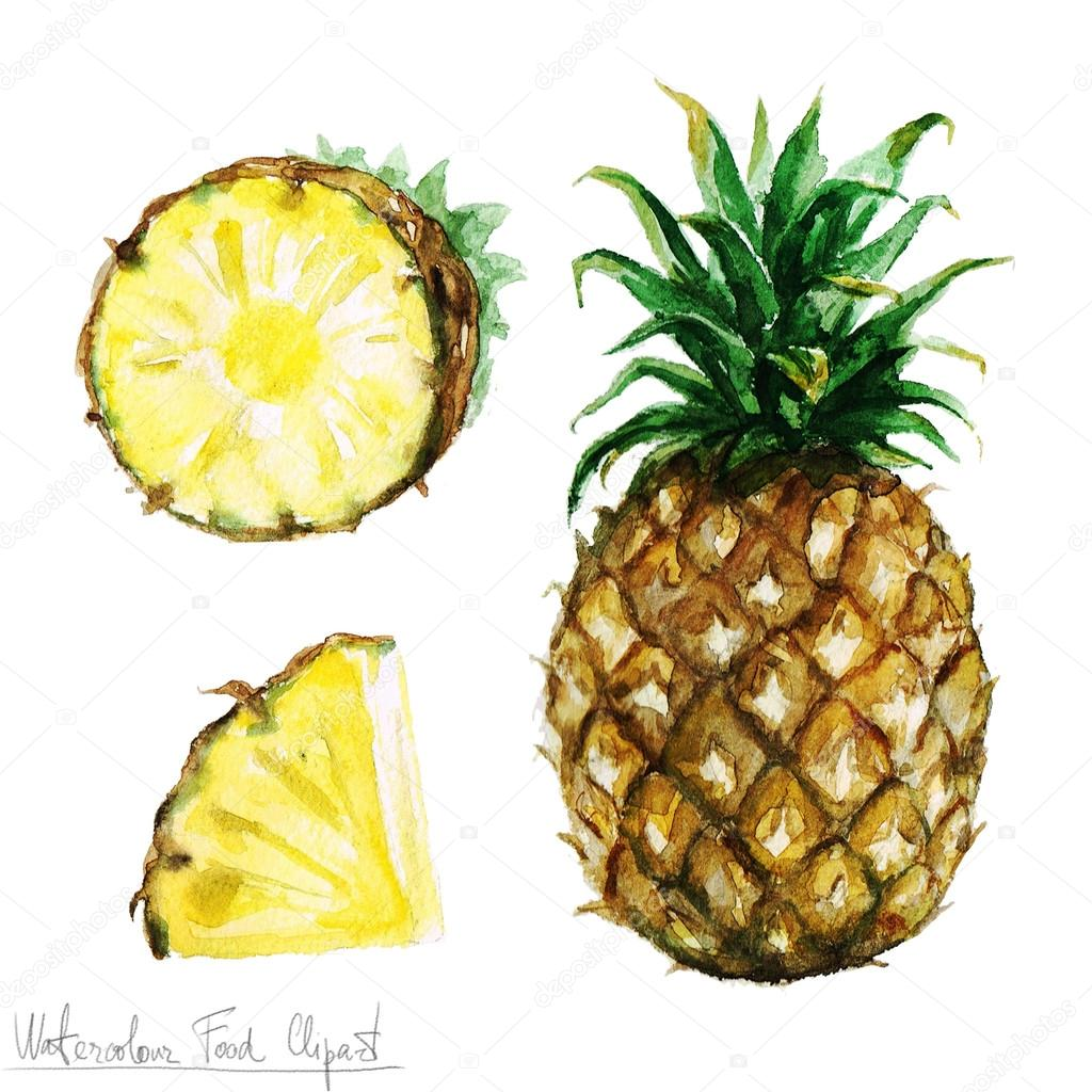 Clipart: pineapple image | Watercolor Food Clipart ...